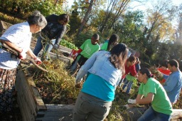 Become a Cottage City Garden Volunteer