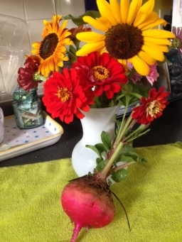 Flowers and Beets in the Garden!