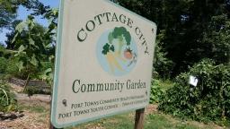Throwback Thursday: Port Towns await first community garden