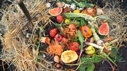 Composting! – September Workshop